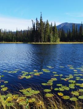 Jack Mould Lake - ca. 6km away